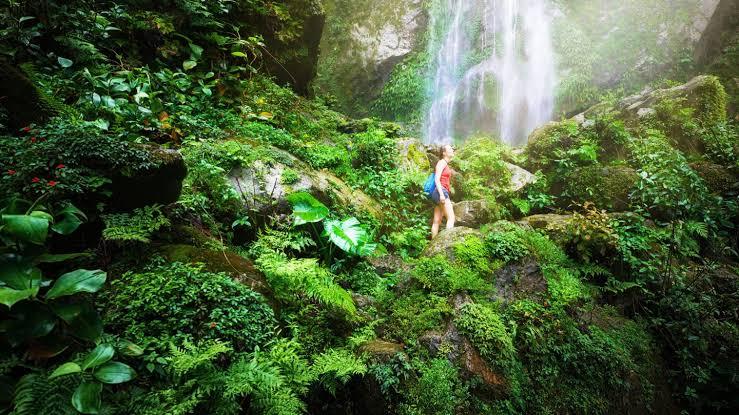 ¿Qué es el Ecoturismo y sus principales características?