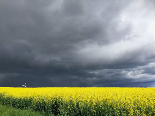 tipos de nubes nimbostrato