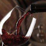 Todo lo que querías saber sobre el vino