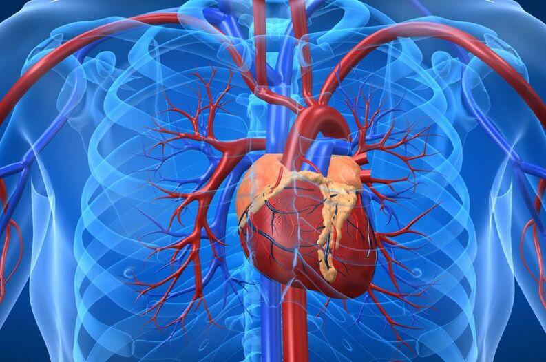 11 factores de enfermedad cardíaca sorprendentes
