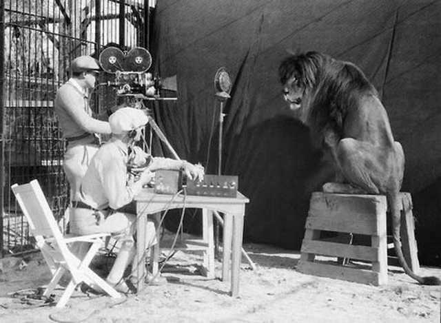 El rodaje del famoso MGM Lion, 1929.