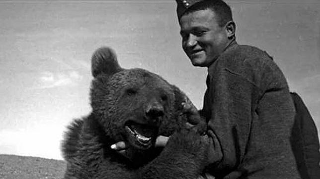Las historias de estos grandes héroes de guerra de animales son inspiradoras