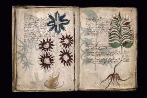 El manuscrito antiguo que nunca fue descifrado ...