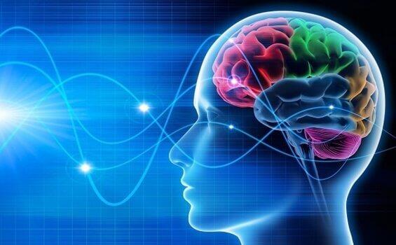 Computadora aprende a traducir ondas cerebrales en oraciones